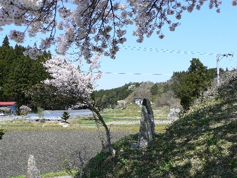 JPEG Image (10224455) Web 表示用 (中).jpg
